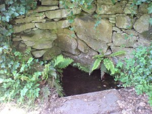 Glamis - Fergus Well (4)