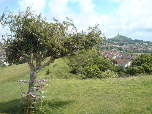 Wearyall Hill - Glasto09 (2)