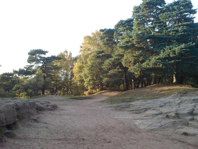 Alderley Edge - Oct09 (9)