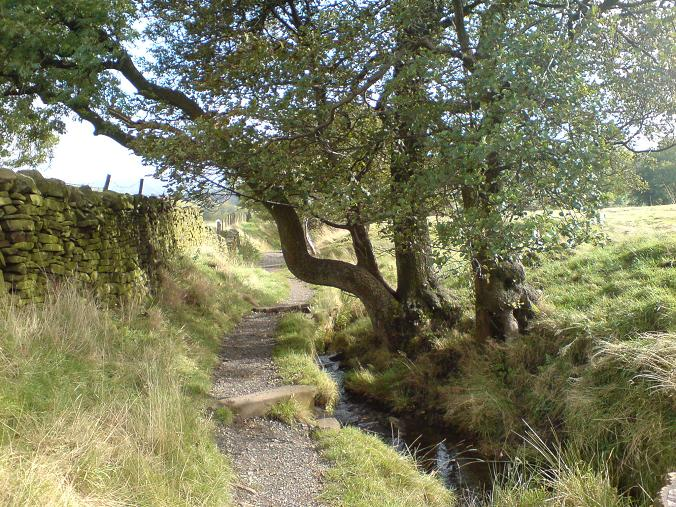Pendle Hill - Oct09 (5)