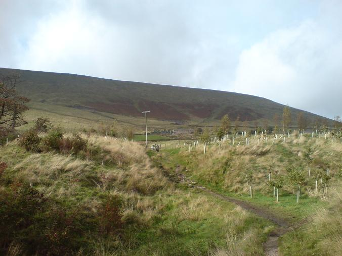 Pendle Hill - Oct09 (7)