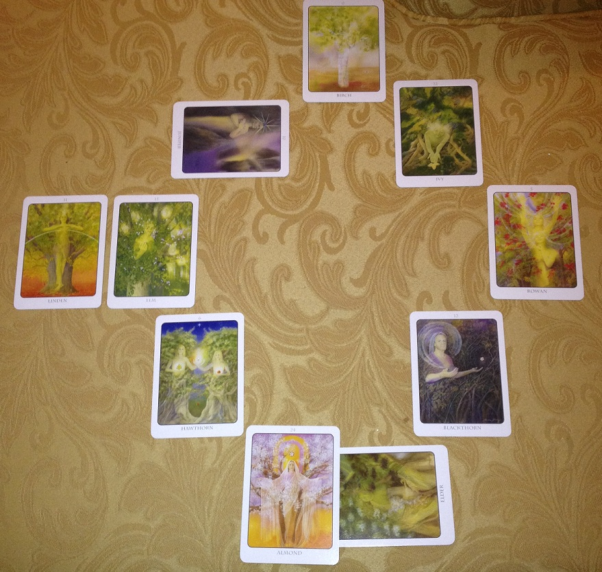 Tree Oracle tarot reading for 2014 (22)