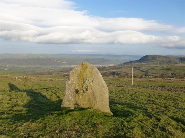 Maen-Y-Bardd - Conwy Valley - April 2014 (5) (Large)