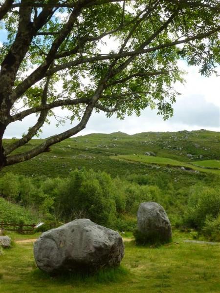 Dromagorteen stone circle (4) (Medium)