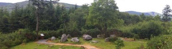 Dromagorteen Stone Circle
