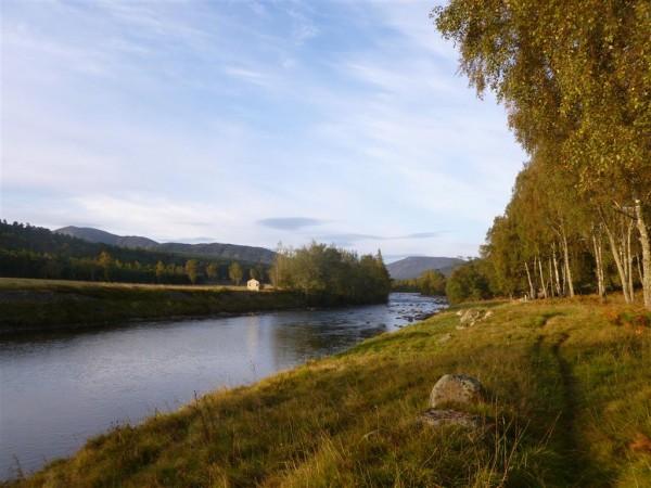 Autumn Equinox at Balmoral Forest (7) (Medium)