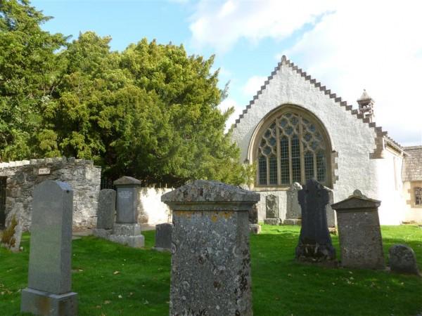 Fortingall Yew - Sept 14 (13) (Medium)