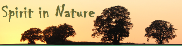 Spirit-In-Nature-banner