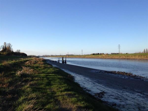 River Dee - Nov 14 (1) (Medium)