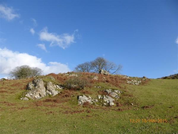 Cerrig Arthur dolmen - Jan 15 (25)