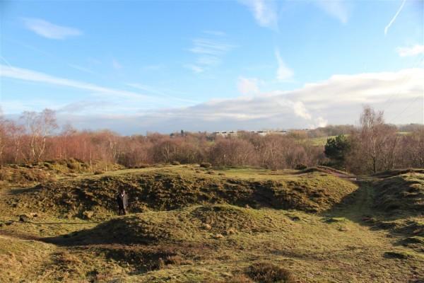 Runcorn Hill - Jan 15 (5)