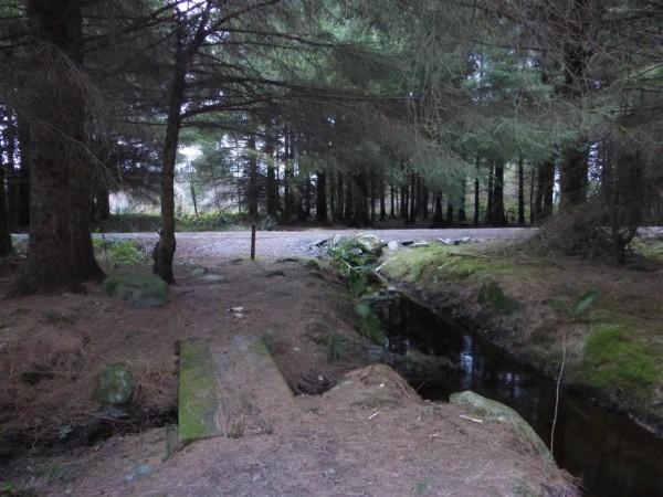 Arthurs Well - Anglesey - Imbolc 2015 (3)