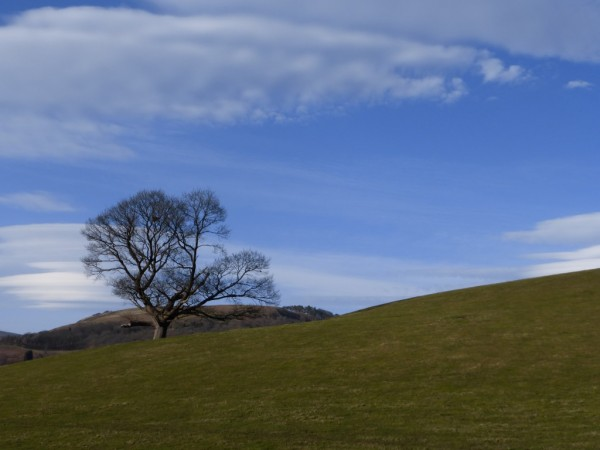 Dinas Bran - March 7th 2015 (3)