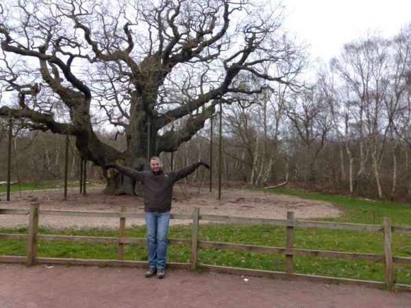 8 - Sherwood Forest (16)