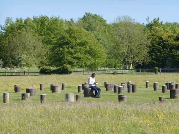 Woodhenge - May 15 (15)