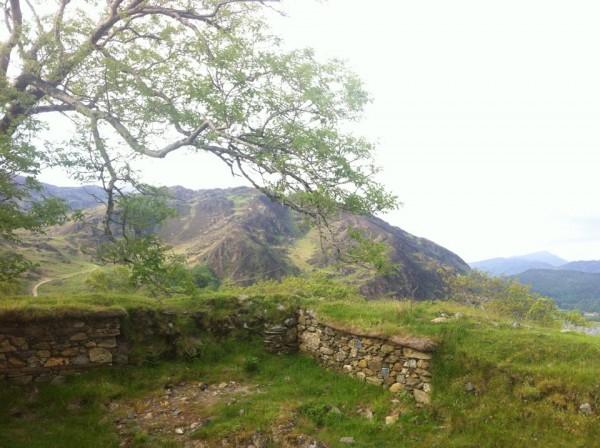 Looking over Dinas Emrys