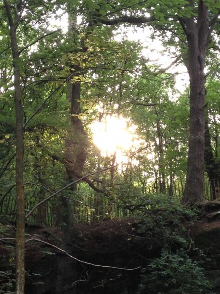 Alderley Edge - July 15 (6)