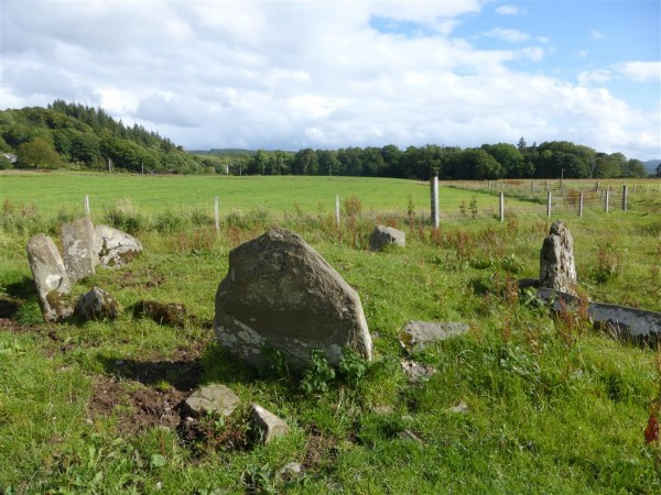 Ballymeanoch stone row and circle - Lammas 2015 (15)