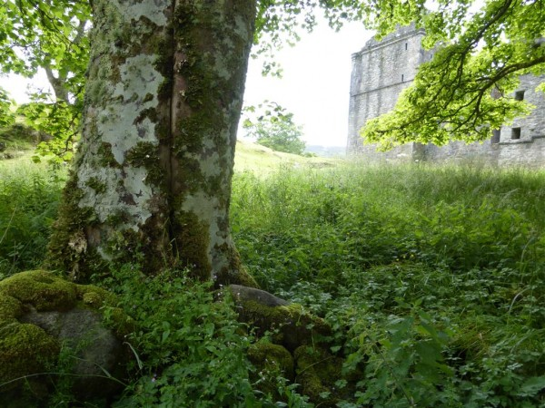 Carnasserie Castle - Lammas 2015 (19)