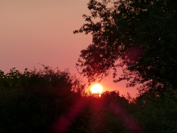 Sunset on 12th August