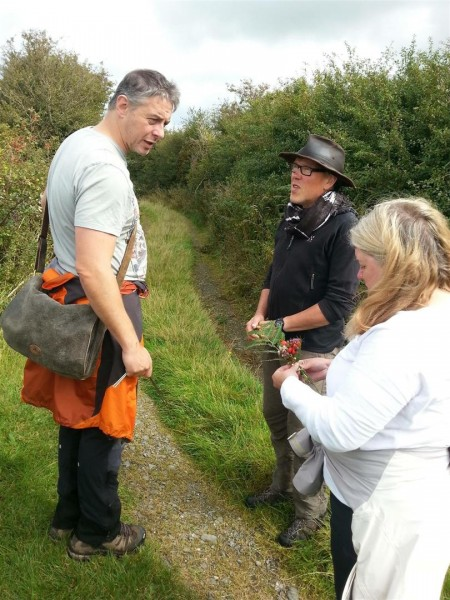 Anglesey Megalithic Tour - Sept 15 (36)