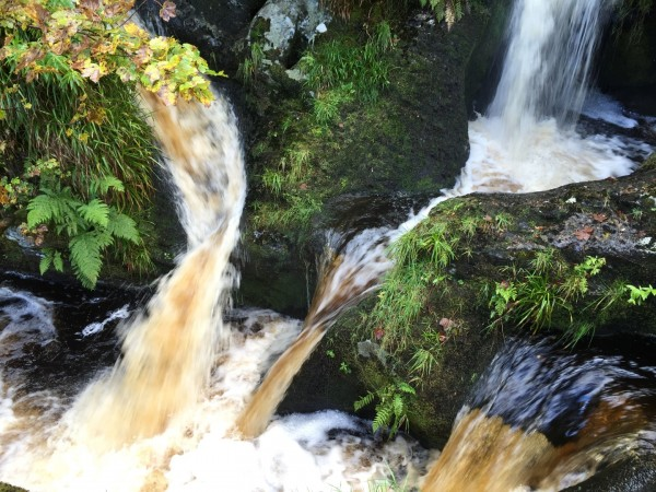 Llanrhaeadr Waterfall - autumn 2015 (5)