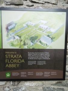 Strata Florida Abbey - March 16 (11)