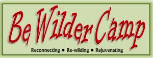 Bewildercamp logo