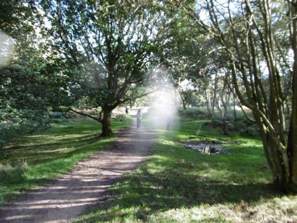 derbyshire-megalithic-tour-oct-16-28