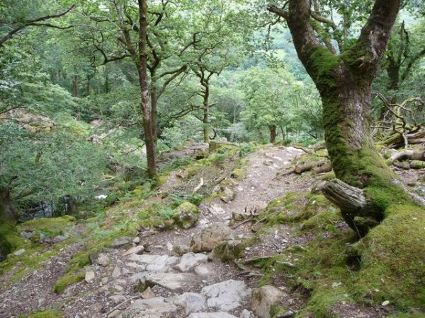 Part of the Minffordd path up Cadair Idris